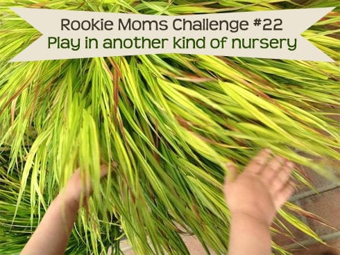 Activity #22: Play in another kind of nursery